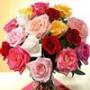 Оригинальная ава из категории Цветы #707