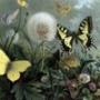 Крутая картинка для аватарки из категории Цветы #777