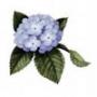 Оригінальна картинка для аватарки из категории Квіти #812