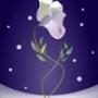 Прикольна автрака из категории Квіти #814