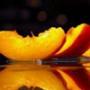Бесплатная ава из категории Цветы #818