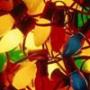 Крута ава из категории Квіти #822