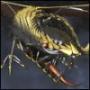 Прикольная картинка для аватарки из категории Драконы #1164