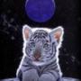 Бесплатная картинка для аватарки из категории Животные #1668
