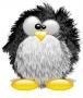Безкоштовна ава из категории Linux #2276