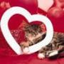 Прикольна ава из категории Кохання #2468