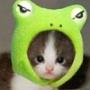 Оригінальна картинка для аватарки из категории Коти та кішки #3435