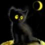 Прикольна автрака из категории Коти та кішки #3503