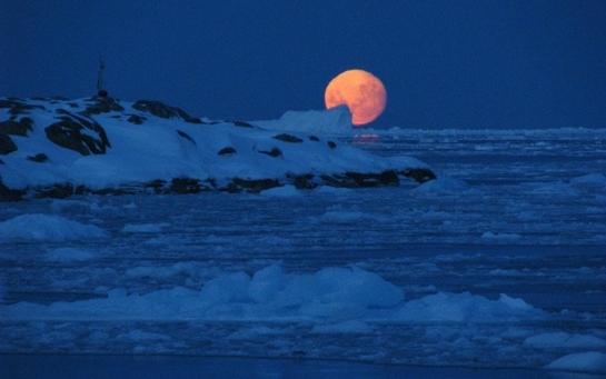 """Між Антарктидою і Дулібами: 5 книжок про """"останній"""" схрон"""