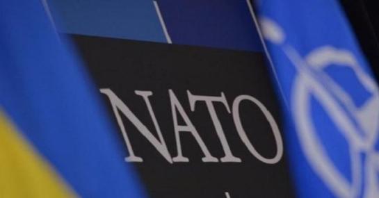 """""""Аспирант НАТО"""": что значит новый статус?"""