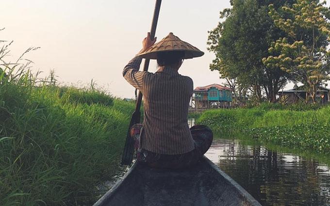 Бирманцы выращивают помидоры прямо вводе