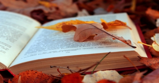 Соловки – Донецьк - Одеса: 5 книжок осені