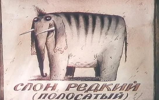 Как в Киеве слона варили