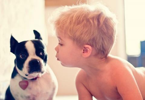 Как выбрать собаку для семьи с детьми
