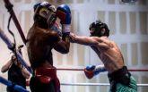 Опытный рефери помогает МакГрегору освоить правила бокса
