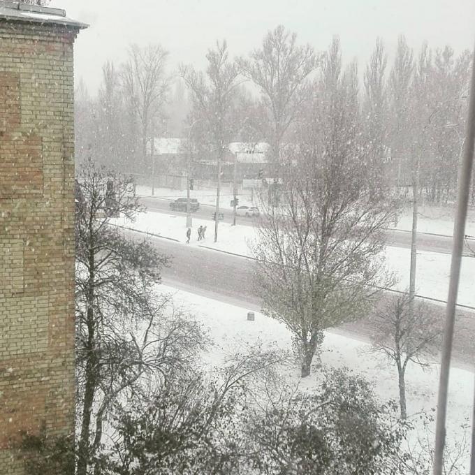Киев накрыл мощный снегопад, на дорогах коллапс: первые яркие фото и видео (6)