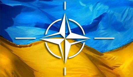 Яценюк: вступ до НАТО підтримує більшість українців