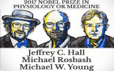 Нобелівську премію з хімії присудили вченим за розробку кріоелектронної мікроскопії