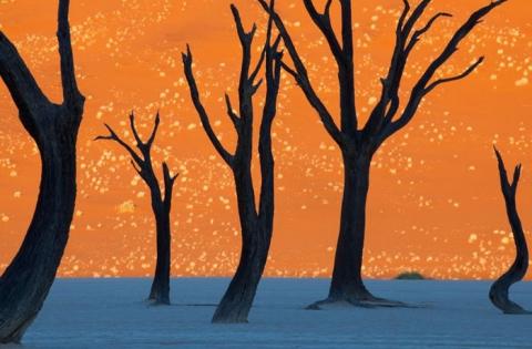 Сказочные места на планете, от которых перехватывает дыхание (15 фото) (8)