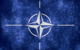 В НАТО впервые ответили на сокрушительную критику Трампа