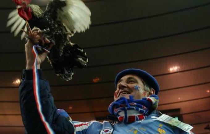 Талісману збірної Франції заборонили бути присутнім на матчах Євро-2016