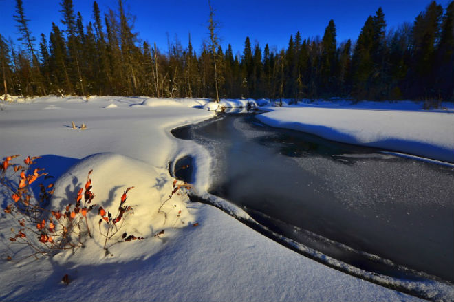 Погода на сьогодні: на більшій частині України сніг, температура від -9 до +1