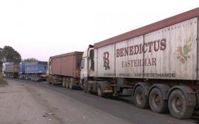 У Миколаєві вийшли на боротьбу зі сміттям зі Львова: опубліковано відео