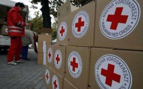 Красный Крест направил гуманитарную помощь в оккупированный Донецк