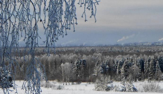 Погода в Украине на сегодня: осадков не ожидается, местами туман, температура днем до +17