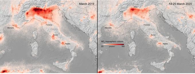 Пандемия коронавируса принесла пользу всему миру - опубликовано фотодоказательство (1)