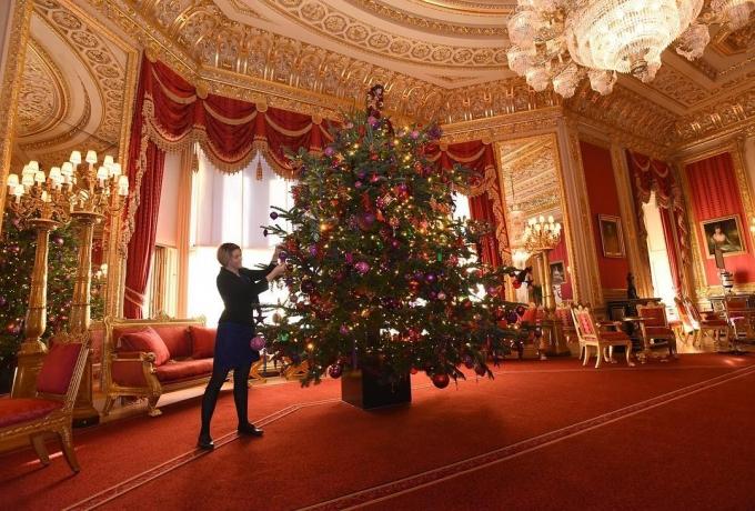 Різдво по-королівськи: в Віндзорському замку встановили святкову ялинку для Єлизавети II (1)