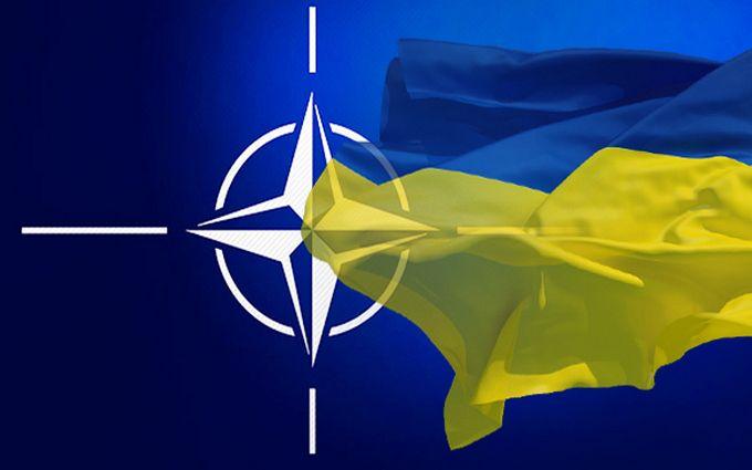 Через курс в НАТО создание Министерства ветеранов - решенный вопрос