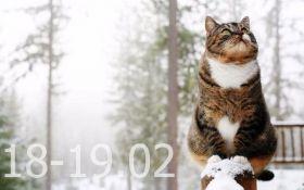 Прогноз погоды на выходные дни в Украине - 18-19 февраля