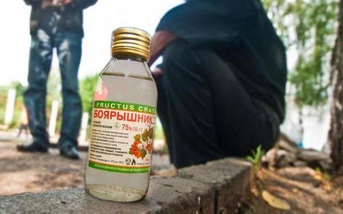 ВМИД РФ обиделись наукраинского посла зашутки о«Боярышнике»