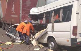 Жуткое ДТП в Житомирской области - десятки погибших и травмированных
