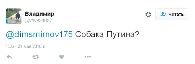 Плаття короткувате: в соцмережах висміяли нові фото одіозної чиновниці Путіна (6)
