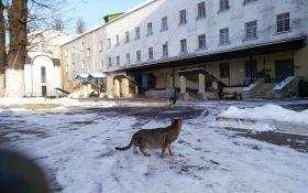 Попытка бунта в Лукьяновском СИЗО: появилось важное видео