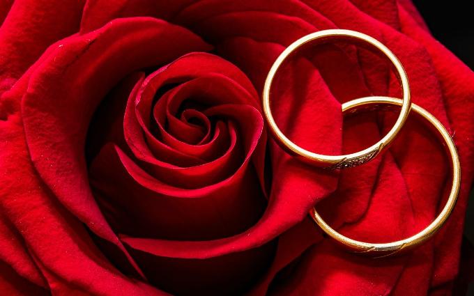 Обручальные кольца из золота: что сейчас модно (1)