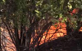 Донетчина в огне: появилось видео последствий обстрела боевиков ДНР