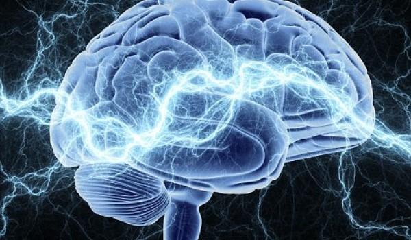 Как запрограммировать себя быть счастливым: советы ученого-нейробиолога (1)