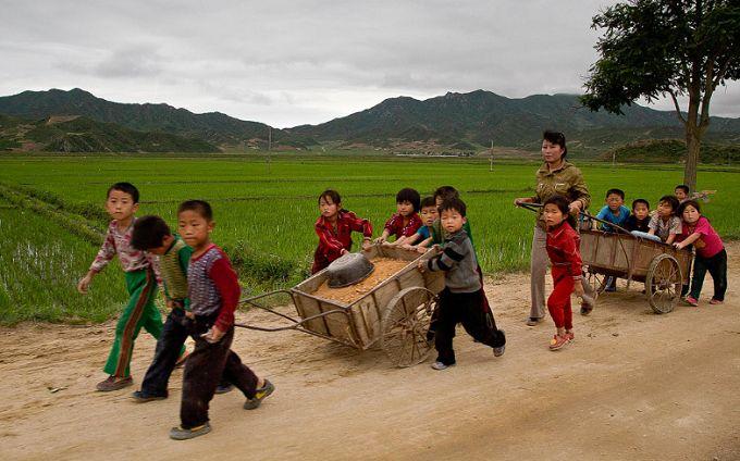 Шокуюча цифра: названа кількість жителів КНДР, що перебувають на межі голоду