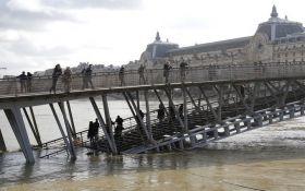 Париж через повінь атакували щури: опубліковано відео
