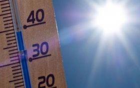 Екстремальна спека з катастрофічними наслідками: вчені зробили тривожний прогноз на 2019 рік