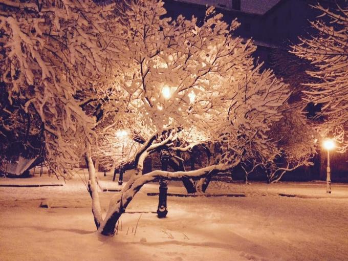 Львов засыпало снегом: в сети публикуют зрелищные фото (5)