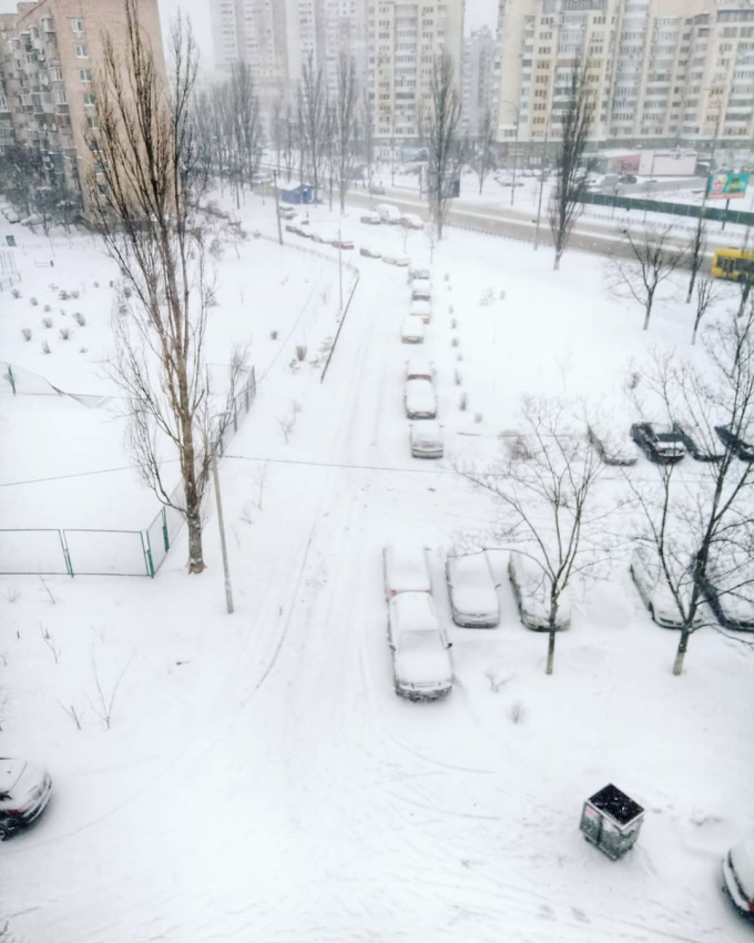 Киев засыпало снегом: пользователи сети публикуют яркие фото (1)