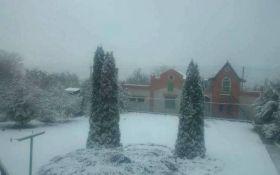 На Харківщині випав перший сніг: опубліковано відео