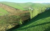 В Кыргызстане оползень накрыл деревню, погибли более 20 человек: появилось видео