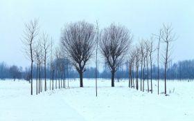 Прогноз погоды в Украине на пятницу - 22 февраля