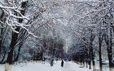 Киев накрыл мощный снегопад, на дорогах коллапс: первые яркие фото и видео