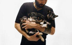 Помоги щенкам найти дом: в Киеве стартовал самый добрый фотопроект для животных